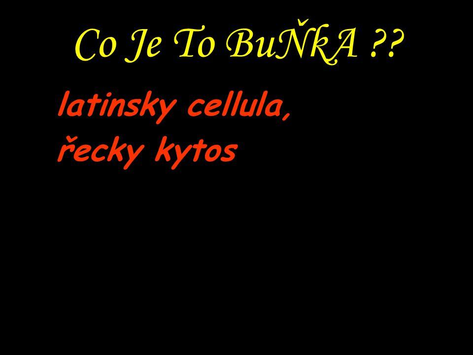 Co Je To BuŇkA ?? latinsky cellula, řecky kytos