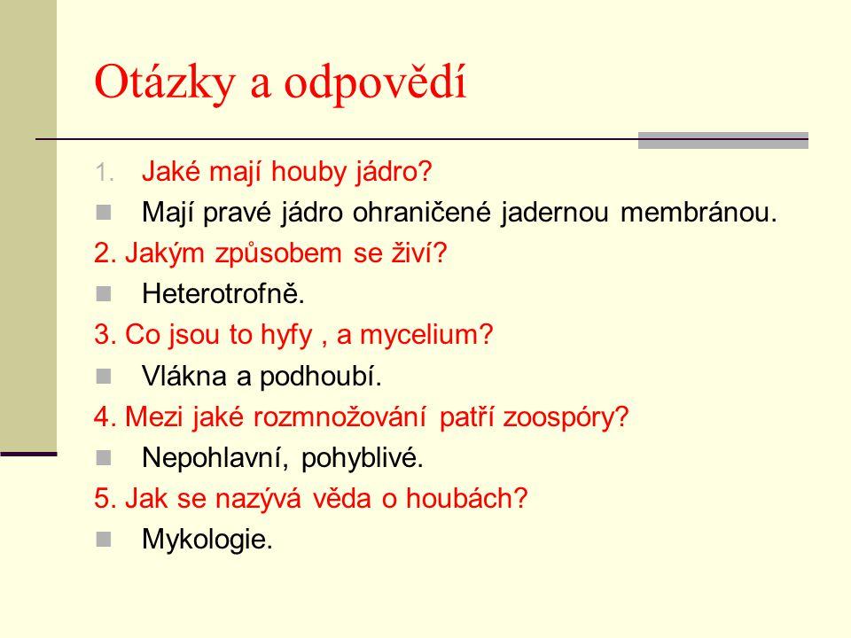 Otázky a odpovědí 1. Jaké mají houby jádro. Mají pravé jádro ohraničené jadernou membránou.