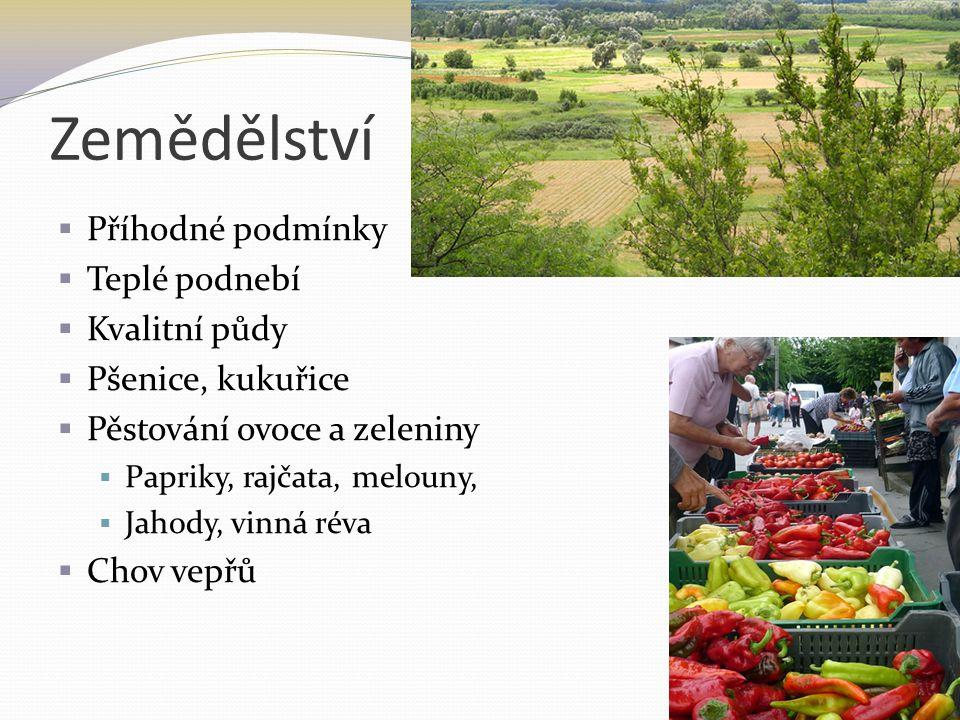 Zemědělství  Příhodné podmínky  Teplé podnebí  Kvalitní půdy  Pšenice, kukuřice  Pěstování ovoce a zeleniny  Papriky, rajčata, melouny,  Jahody