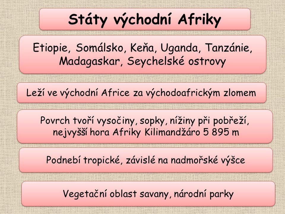 Státy východní Afriky Leží ve východní Africe za východoafrickým zlomem Leží ve východní Africe za východoafrickým zlomem Povrch tvoří vysočiny, sopky