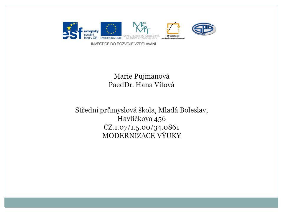 Anotace Předmět: český jazyk a literatura Ročník: III.