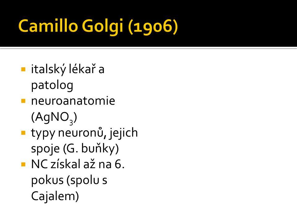  italský lékař a patolog  neuroanatomie (AgNO 3 )  typy neuronů, jejich spoje (G. buňky)  NC získal až na 6. pokus (spolu s Cajalem)
