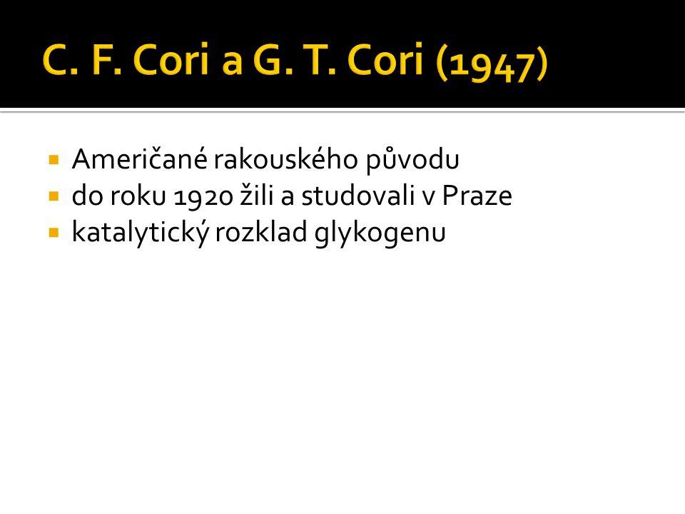  Američané rakouského původu  do roku 1920 žili a studovali v Praze  katalytický rozklad glykogenu