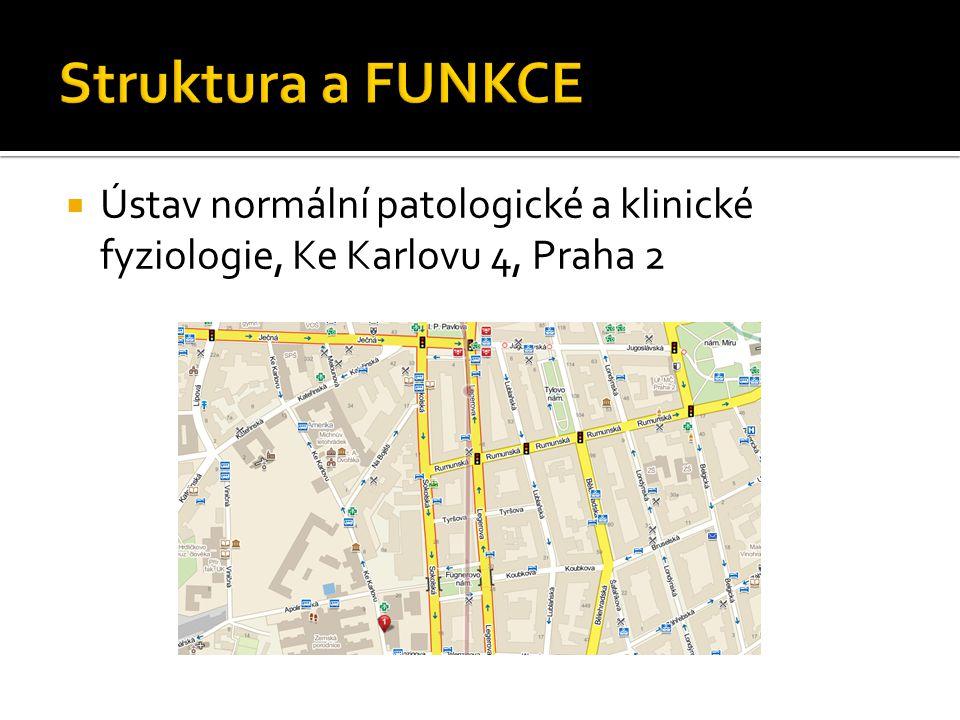  Ústav normální patologické a klinické fyziologie, Ke Karlovu 4, Praha 2