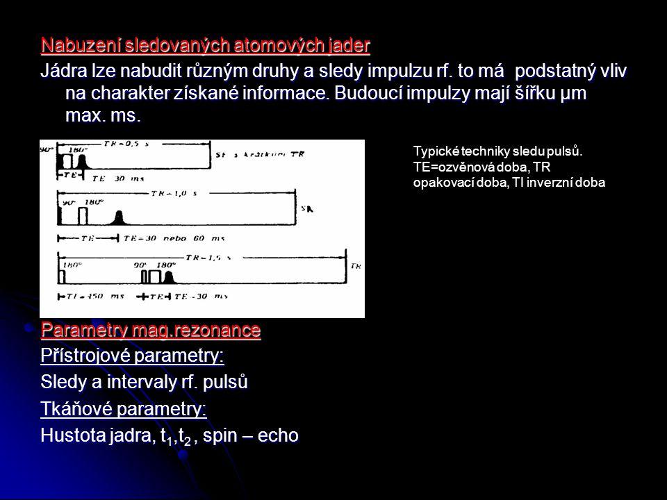 Čerpal: Diagnostika magnetickou rezonancí (Ing.