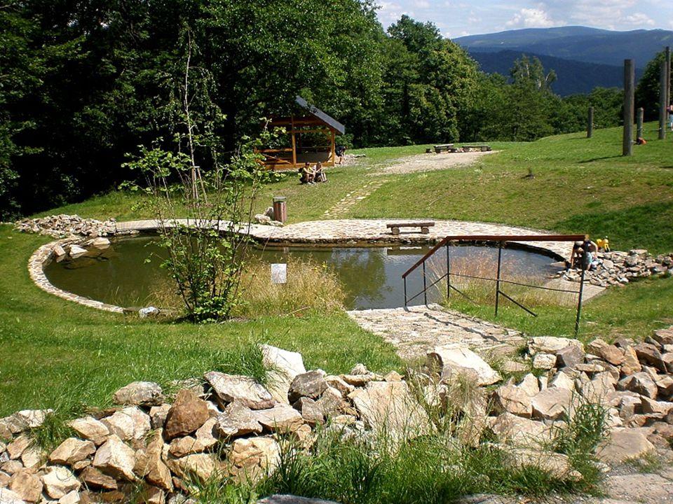 Unikátní Balneopark ZDARMA Nikde jinde vám neposkytnou Priessnitzovy procedury v takové kvalitě a tradici jako v Priessnitzových léčebných lázních. Lé