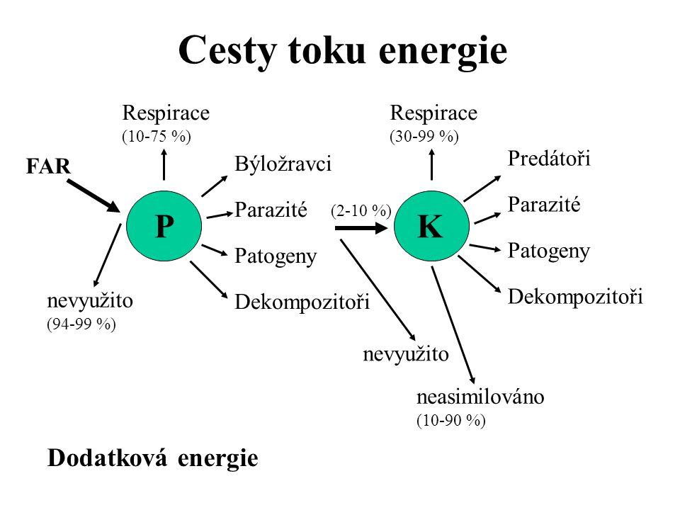 Ekologické pyramidy Pyramidy - početnosti - biomasy - energie P – zelené rostliny K1 – býložravci K2-n
