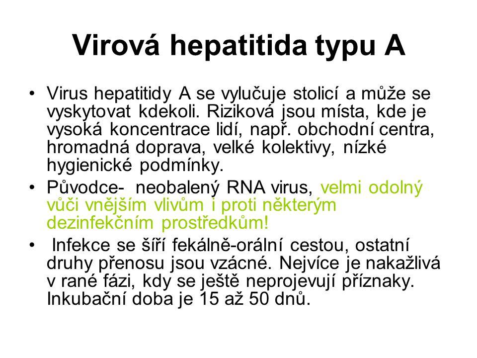 Virová hepatitida typu A Virus hepatitidy A se vylučuje stolicí a může se vyskytovat kdekoli. Riziková jsou místa, kde je vysoká koncentrace lidí, nap