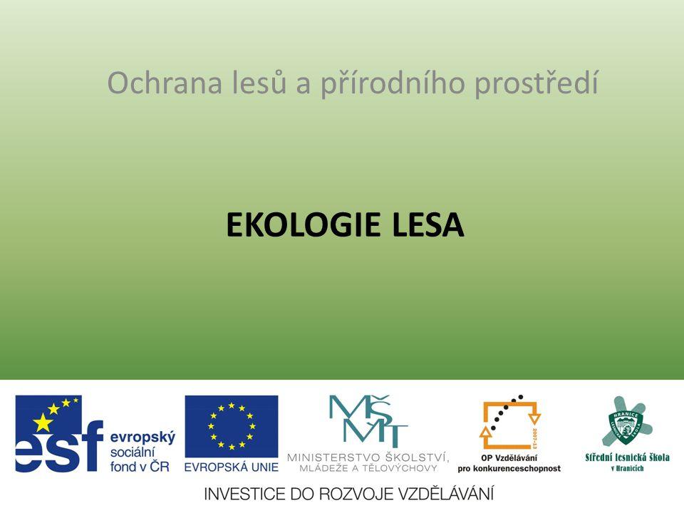 EKOLOGIE LESA Ochrana lesů a přírodního prostředí