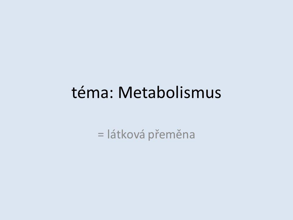 téma: Metabolismus = látková přeměna