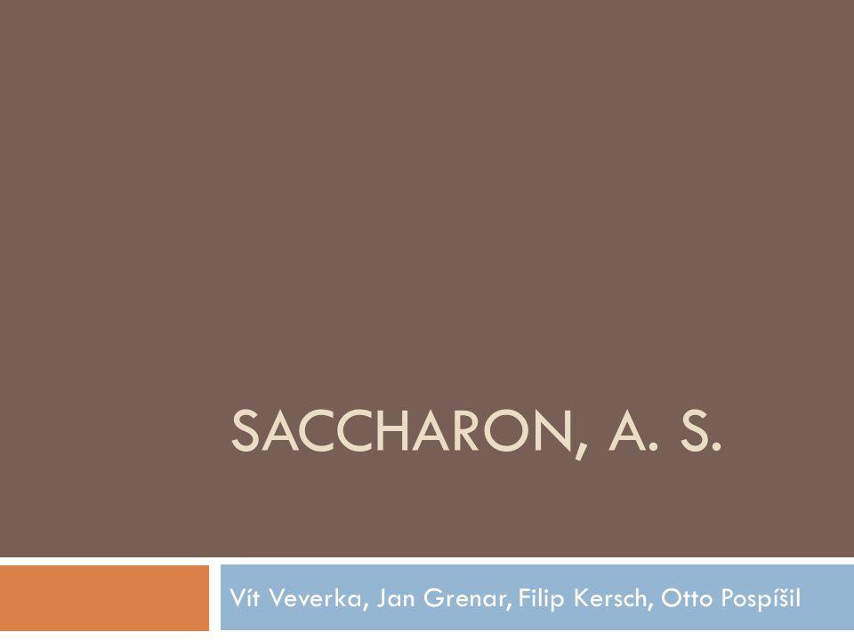 SACCHARON, A. S. Vít Veverka, Jan Grenar, Filip Kersch, Otto Pospíšil