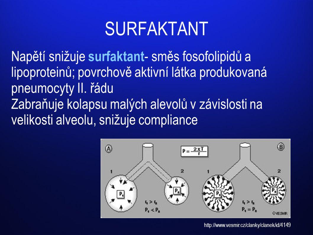 SURFAKTANT Napětí snižuje surfaktant - směs fosofolipidů a lipoproteinů; povrchově aktivní látka produkovaná pneumocyty II. řádu Zabraňuje kolapsu mal
