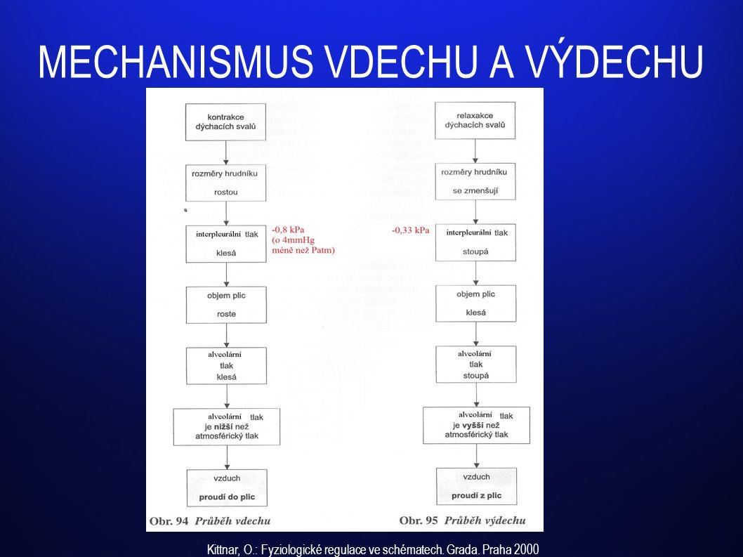 MECHANISMUS VDECHU A VÝDECHU Kittnar, O.: Fyziologické regulace ve schématech. Grada. Praha 2000