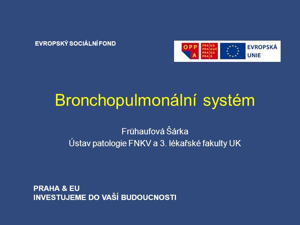 Bronchopulmonální systém Frühaufová Šárka Ústav patologie FNKV a 3. lékařské fakulty UK EVROPSKÝ SOCIÁLNÍ FOND PRAHA & EU INVESTUJEME DO VAŠÍ BUDOUCNO