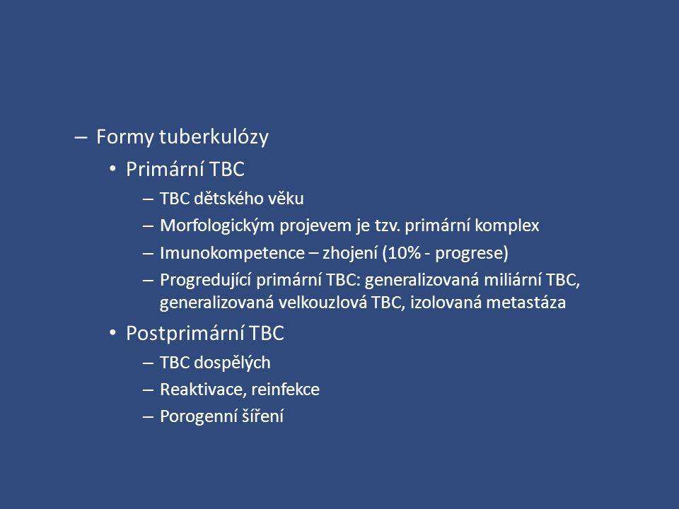 – Formy tuberkulózy Primární TBC – TBC dětského věku – Morfologickým projevem je tzv. primární komplex – Imunokompetence – zhojení (10% - progrese) –