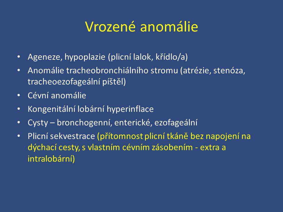 Vrozené anomálie Ageneze, hypoplazie (plicní lalok, křídlo/a) Anomálie tracheobronchiálního stromu (atrézie, stenóza, tracheoezofageální píštěl) Cévní