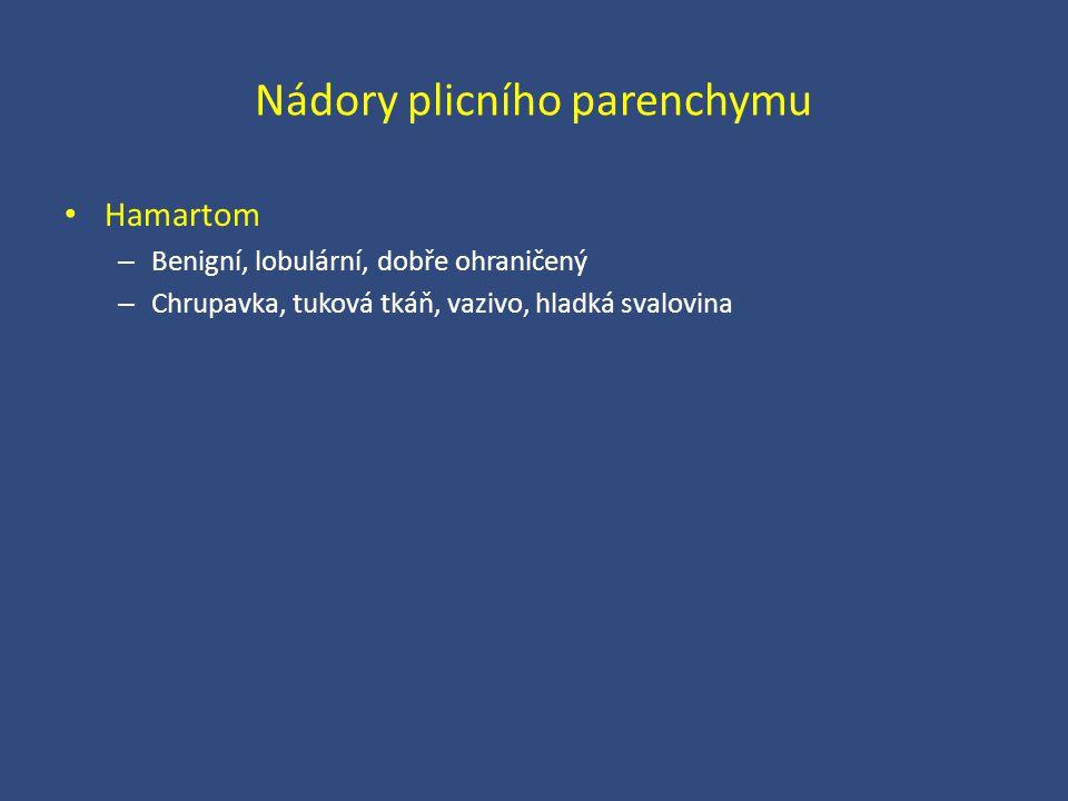 Nádory plicního parenchymu Hamartom – Benigní, lobulární, dobře ohraničený – Chrupavka, tuková tkáň, vazivo, hladká svalovina