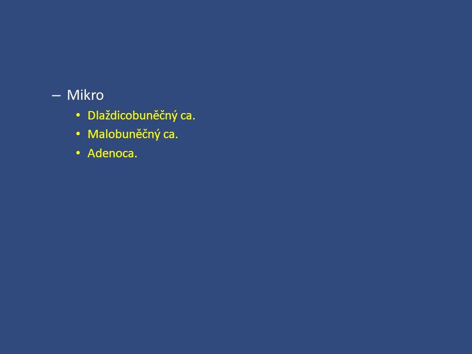 – Mikro Dlaždicobuněčný ca. Malobuněčný ca. Adenoca.