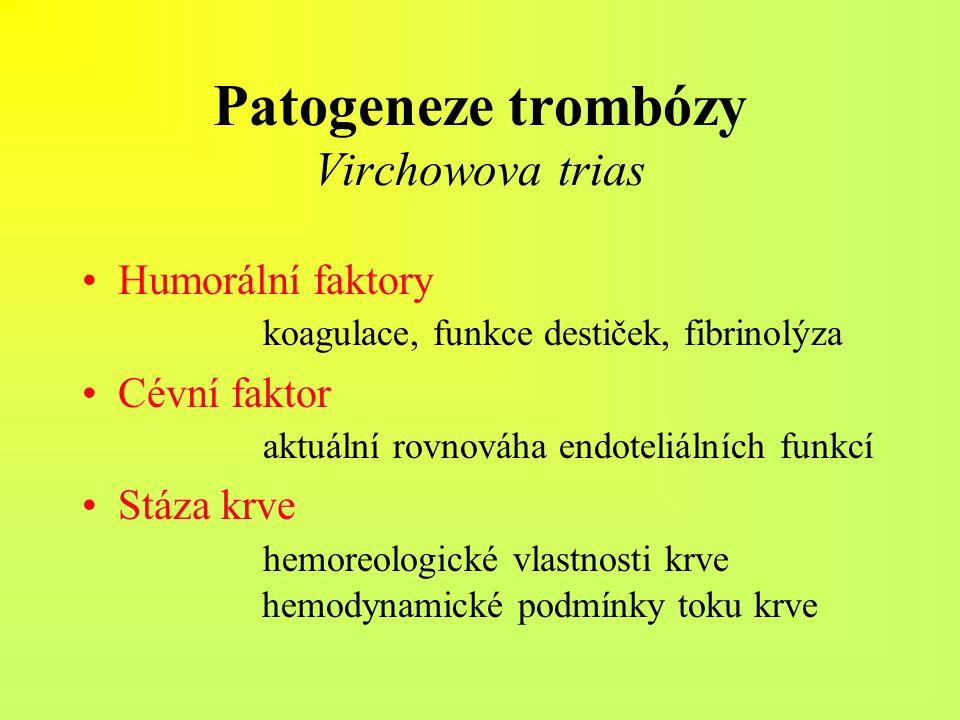Patogeneze trombózy Virchowova trias Humorální faktory koagulace, funkce destiček, fibrinolýza Cévní faktor aktuální rovnováha endoteliálních funkcí S
