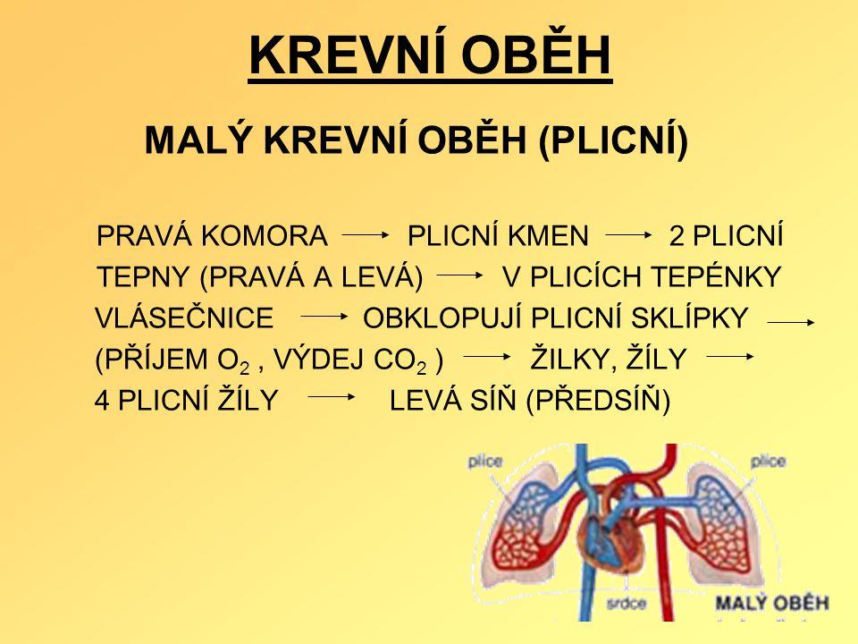 KREVNÍ OBĚH MALÝ KREVNÍ OBĚH (PLICNÍ) PRAVÁ KOMORA PLICNÍ KMEN 2 PLICNÍ TEPNY (PRAVÁ A LEVÁ) V PLICÍCH TEPÉNKY VLÁSEČNICE OBKLOPUJÍ PLICNÍ SKLÍPKY (PŘ