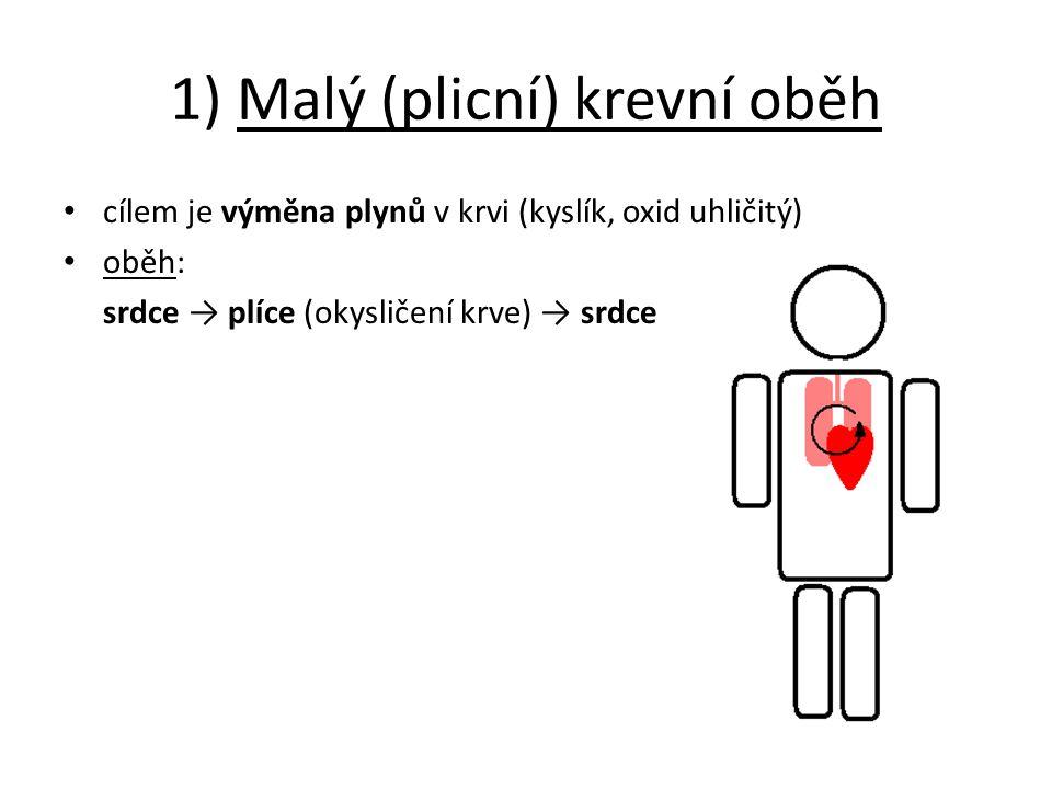 1) Malý (plicní) krevní oběh cílem je výměna plynů v krvi (kyslík, oxid uhličitý) oběh: srdce → plíce (okysličení krve) → srdce