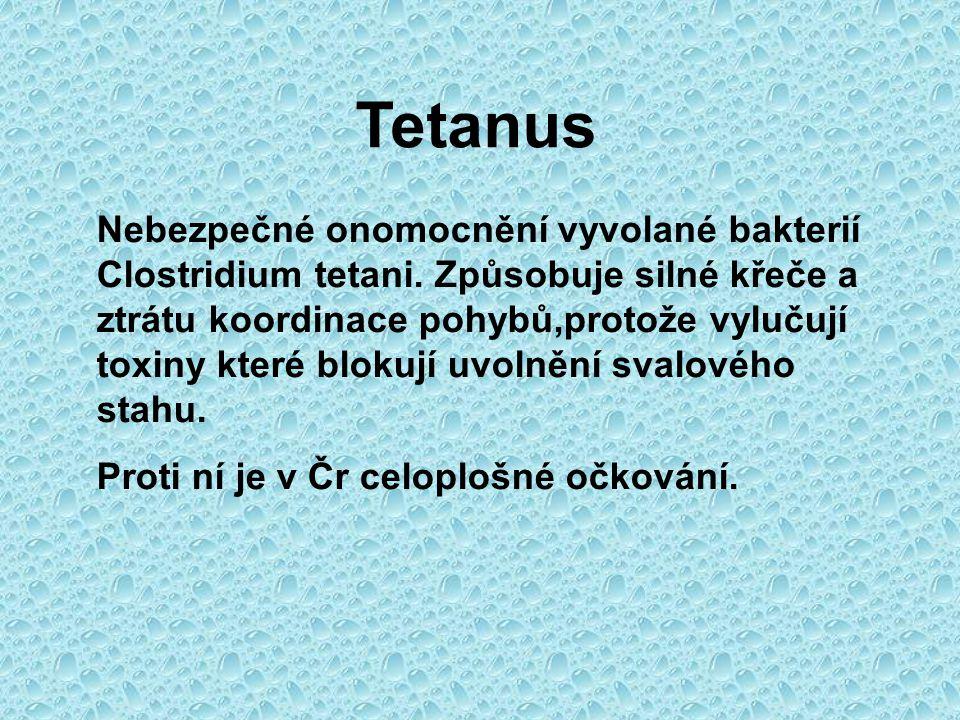 Tetanus Nebezpečné onomocnění vyvolané bakterií Clostridium tetani.