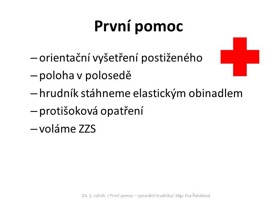 POUŽITÁ LITERATURA KELNAROVÁ, J., SEDLÁČKOVÁ, J., TOUFAROVÁ, J., ĆÍKOVÁ, Z.