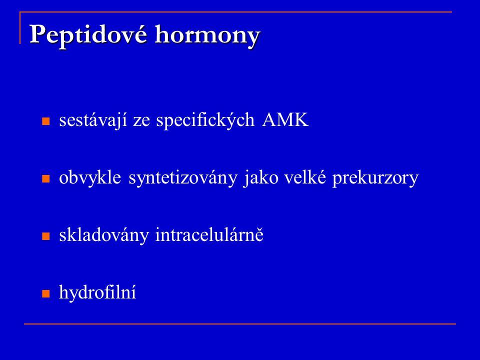 Peptidové hormony sestávají ze specifických AMK obvykle syntetizovány jako velké prekurzory skladovány intracelulárně hydrofilní