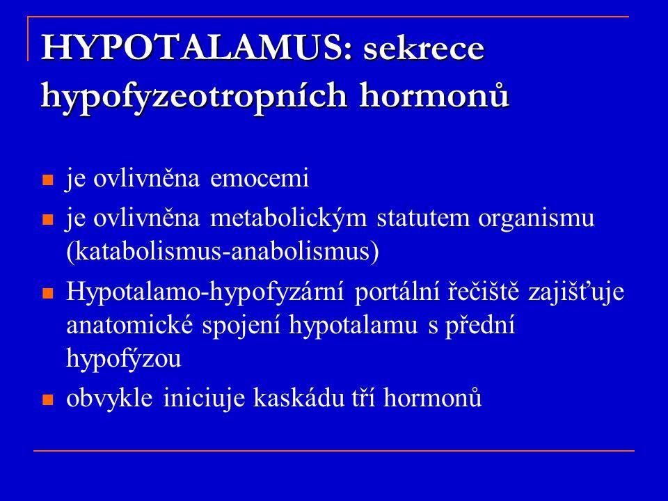 HYPOTALAMUS: sekrece hypofyzeotropních hormonů je ovlivněna emocemi je ovlivněna metabolickým statutem organismu (katabolismus-anabolismus) Hypotalamo