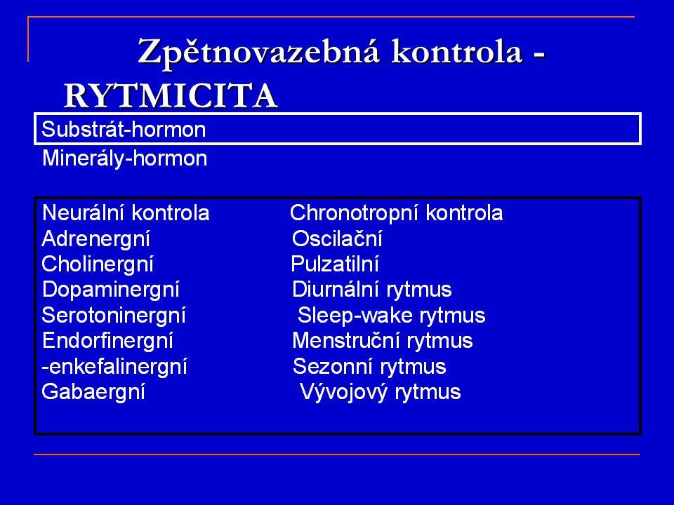 Zpětnovazebná kontrola - RYTMICITA Zpětnovazebná kontrola - RYTMICITA