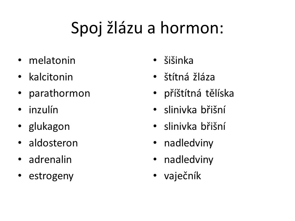 Spoj žlázu a hormon: melatonin kalcitonin parathormon inzulín glukagon aldosteron adrenalin estrogeny šišinka štítná žláza příštítná tělíska slinivka