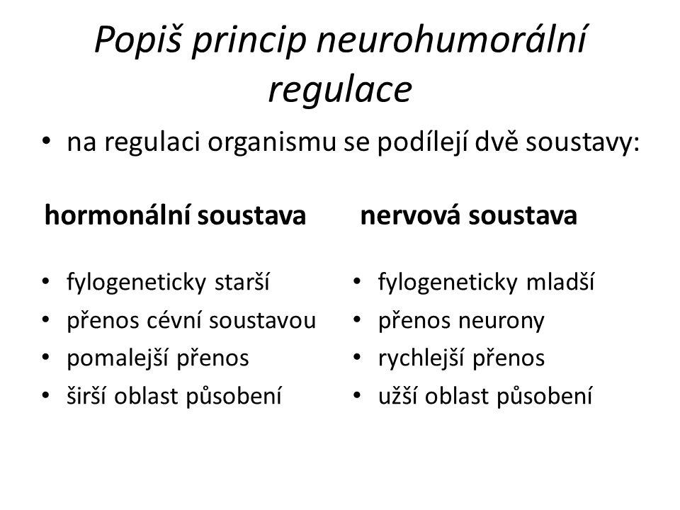 Popiš princip neurohumorální regulace na regulaci organismu se podílejí dvě soustavy: fylogeneticky starší přenos cévní soustavou pomalejší přenos šir
