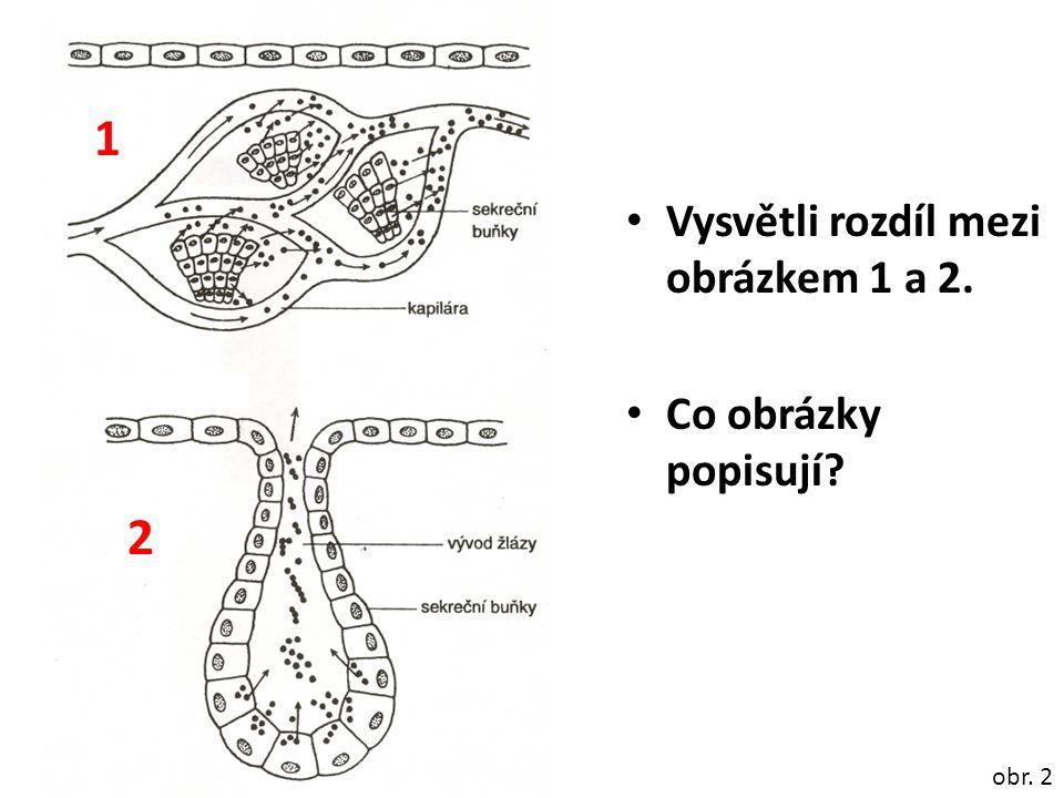 Vysvětli rozdíl mezi obrázkem 1 a 2. Co obrázky popisují? obr. 2 1 2