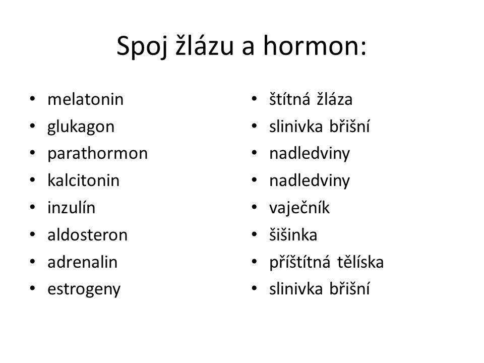 Spoj žlázu a hormon: melatonin glukagon parathormon kalcitonin inzulín aldosteron adrenalin estrogeny štítná žláza slinivka břišní nadledviny vaječník