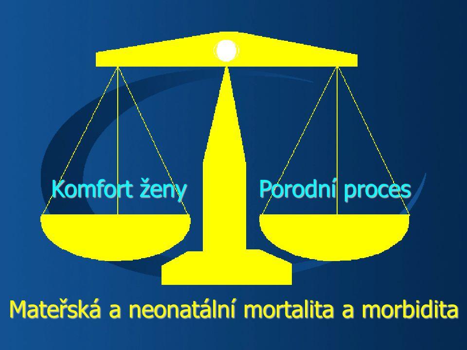 Mateřská a neonatální mortalita a morbidita Porodní proces Komfort ženy