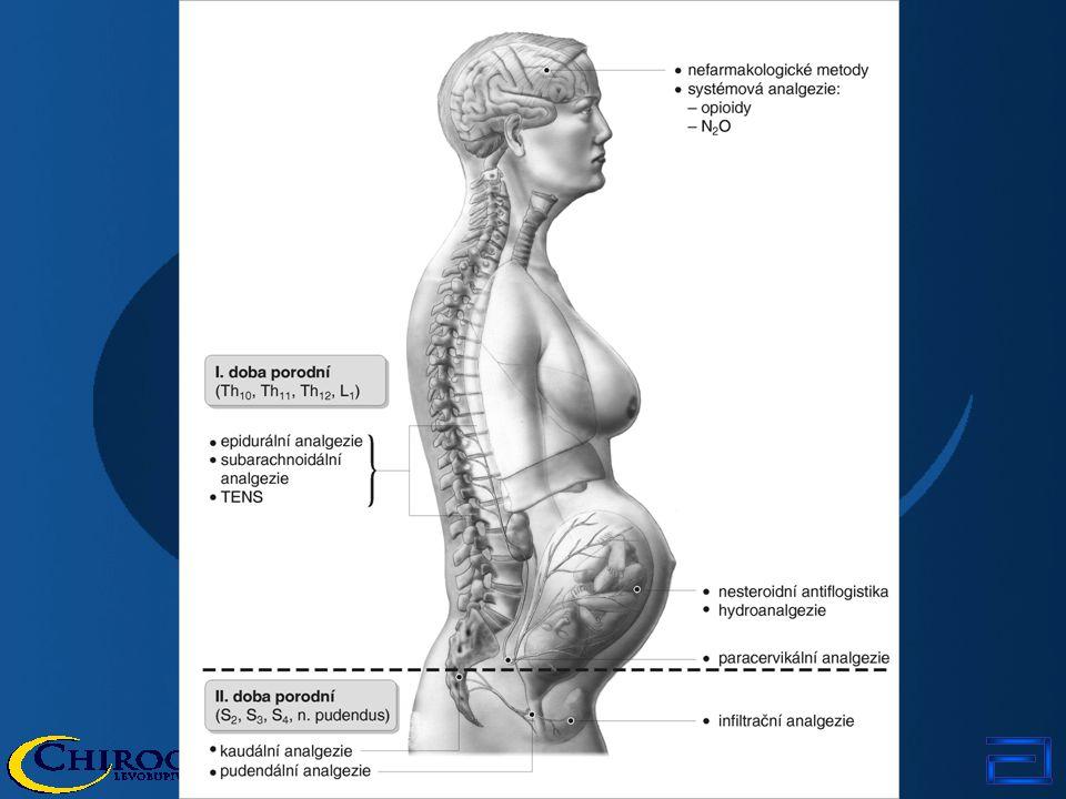Postuláty porodnické analgezie fyziologie těhotné a rodící ženy fyziologie děložní činnosti fyziologie plodu a novorozence analgetická účinnost