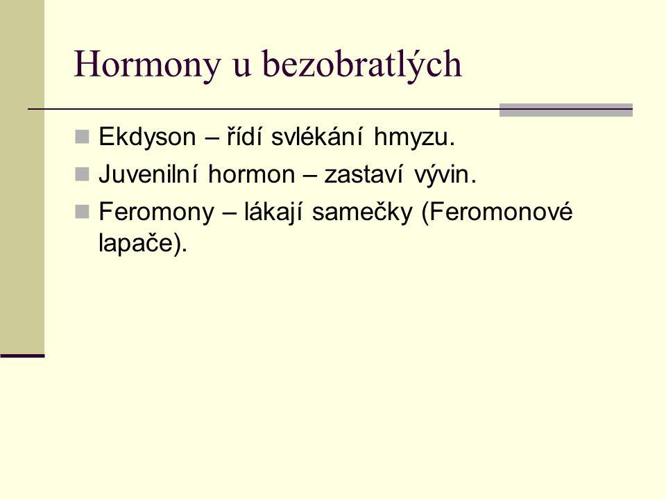Hormony u obratlovců Vznikají hormony výkonné i řídící.