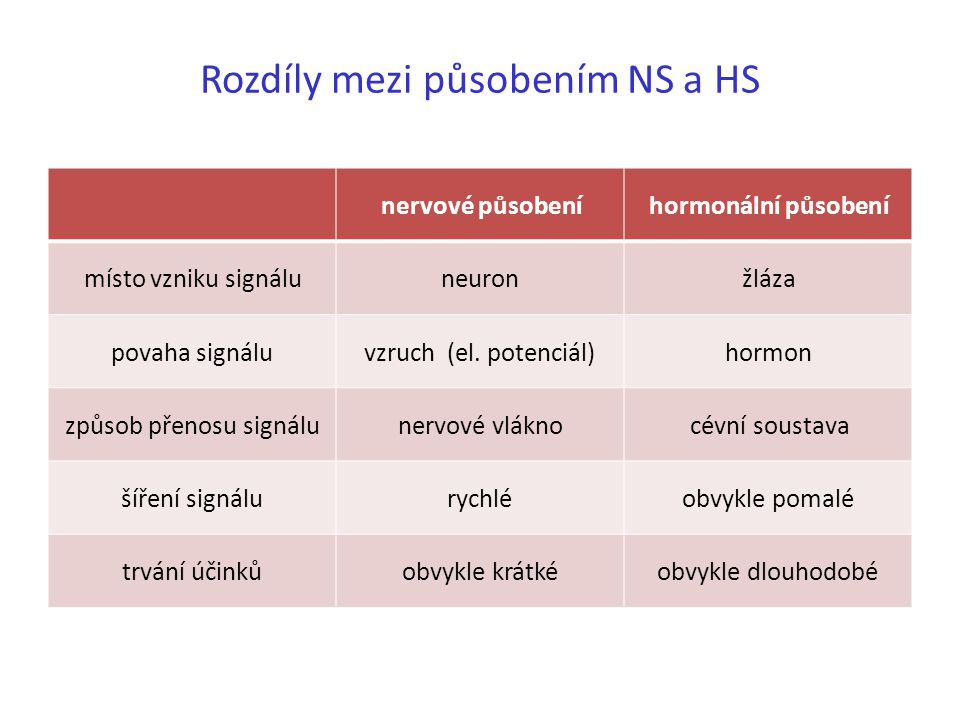 Rozdíly mezi působením NS a HS nervové působeníhormonální působení místo vzniku signáluneuronžláza povaha signáluvzruch (el. potenciál)hormon způsob p