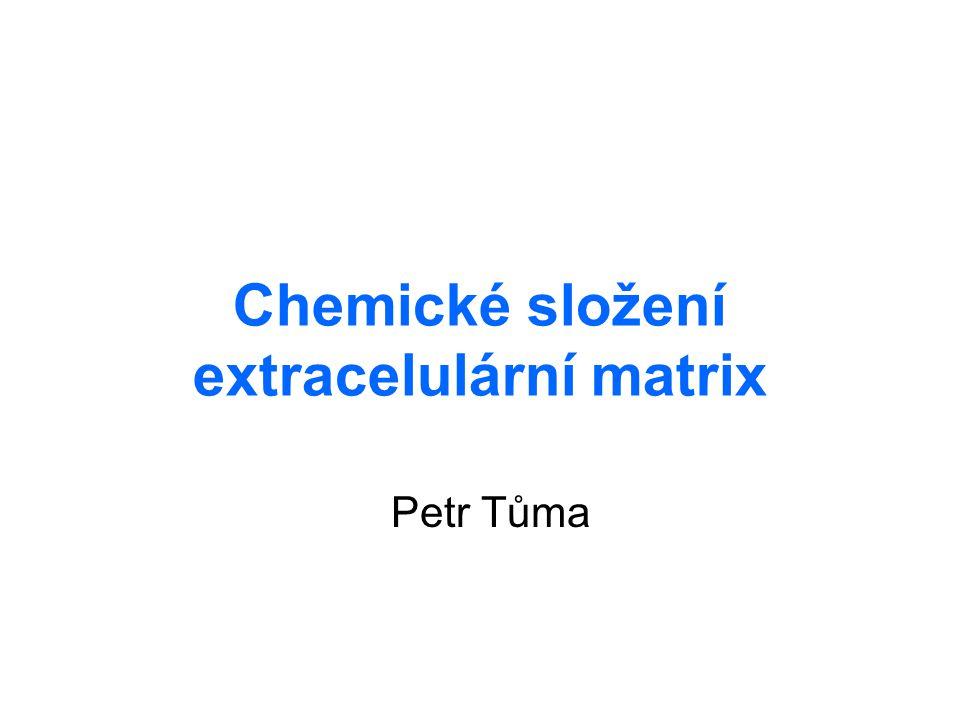 Živočišné tkáně buňky + extracelulární prostor → vyplněn makromolekulami – extracelulární matrix pojiva – extracelulární matrix tvoří většinu hmoty tkáně extracelulární matrix a vlastnost tkáně –šlachy – pevnost + pružnost –kost – tvrdost + hutnost –chrupavka – pružnost + tlumení nárazů –rosol v oku – měkkost + průhlednost –bazální lamina – kontrola buněk