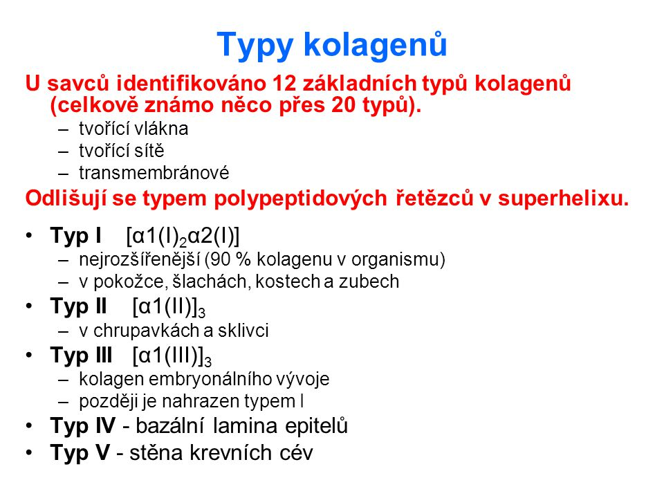 Typy kolagenů U savců identifikováno 12 základních typů kolagenů (celkově známo něco přes 20 typů). –tvořící vlákna –tvořící sítě –transmembránové Odl