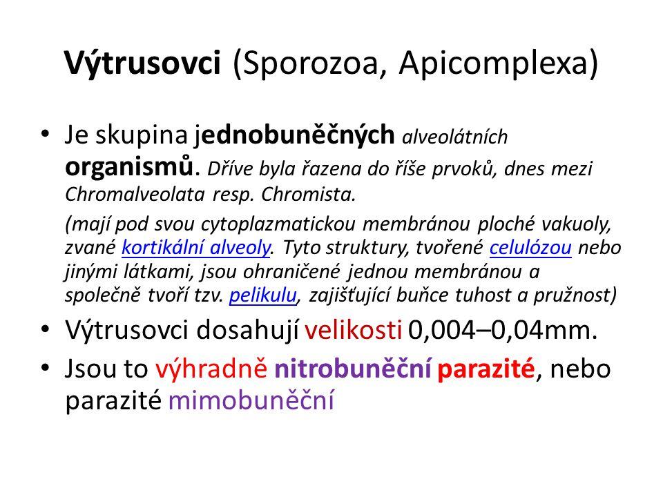 Výtrusovci (Sporozoa, Apicomplexa) Je skupina jednobuněčných alveolátních organismů.