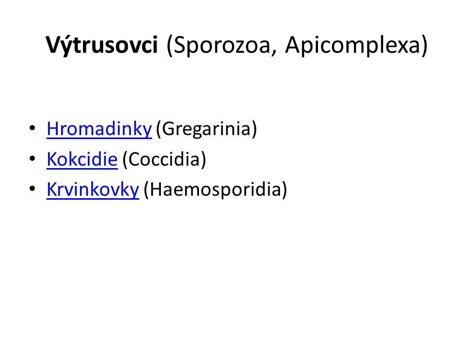 Hromadinky (Gregarinia) Parazité bezobratlých Vývoj probíhá v 1 hostiteli Mají fylogenetický význam.