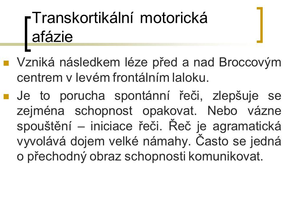 Transkortikální motorická afázie Vzniká následkem léze před a nad Broccovým centrem v levém frontálním laloku. Je to porucha spontánní řeči, zlepšuje