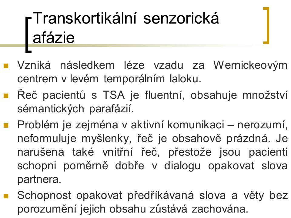 Transkortikální senzorická afázie Vzniká následkem léze vzadu za Wernickeovým centrem v levém temporálním laloku. Řeč pacientů s TSA je fluentní, obsa