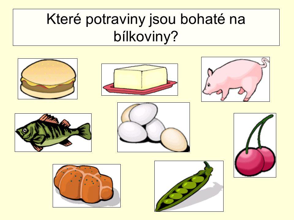 Které potraviny jsou bohaté na bílkoviny?