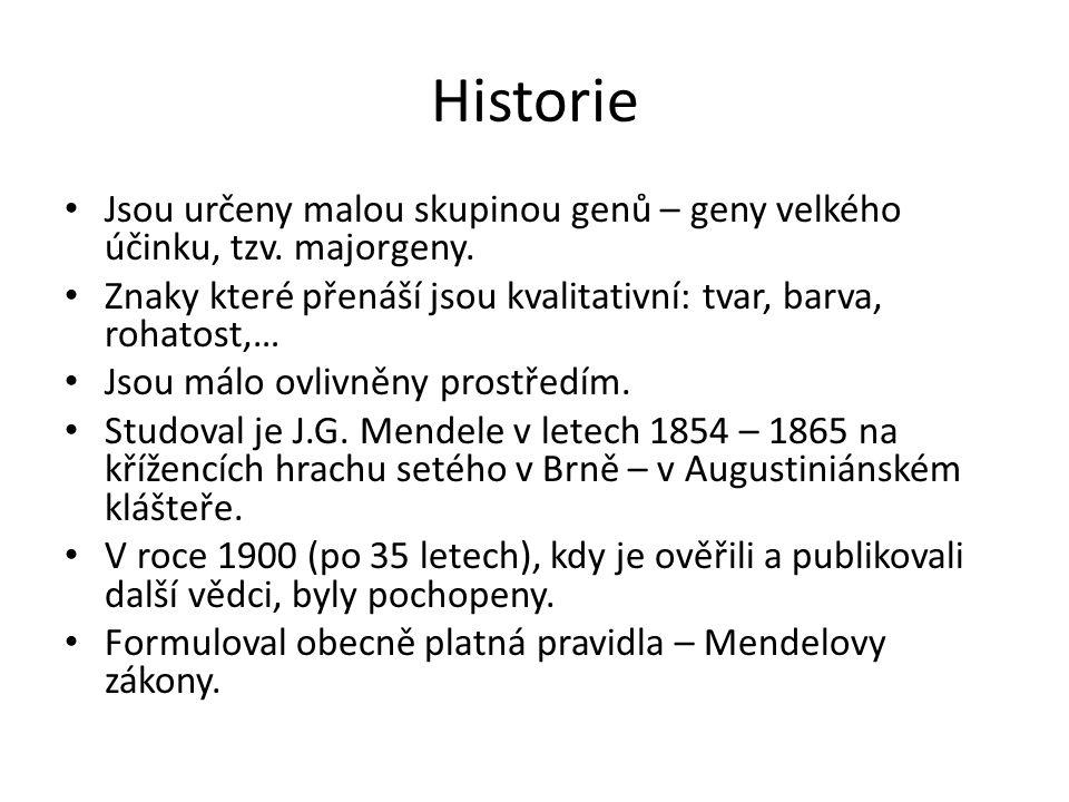 Historie Jsou určeny malou skupinou genů – geny velkého účinku, tzv.