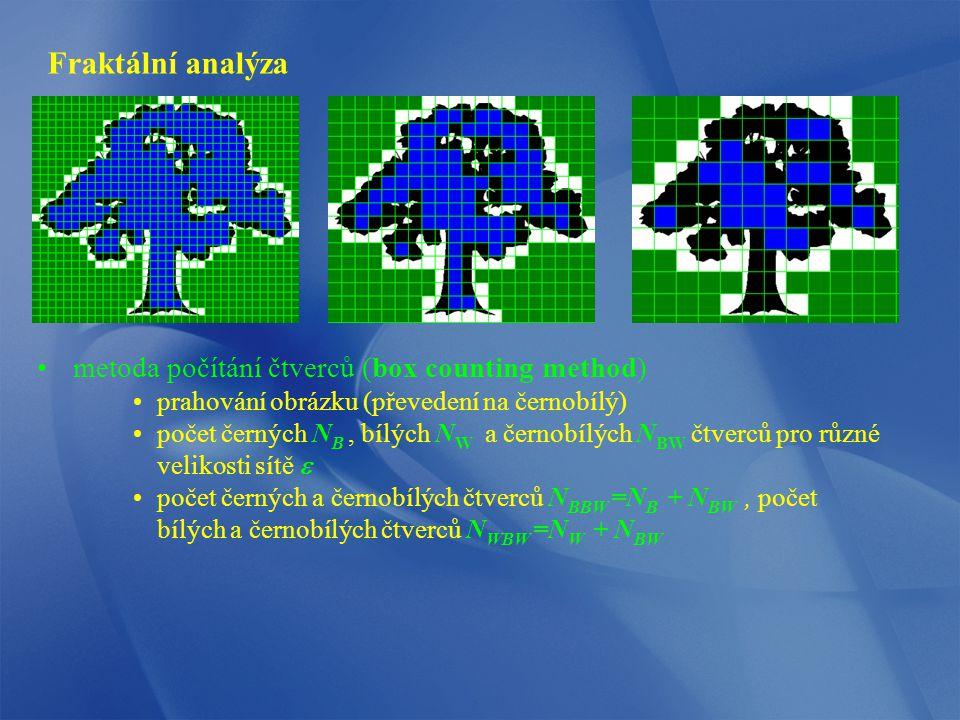 Fraktální analýza metoda počítání čtverců (box counting method) prahování obrázku (převedení na černobílý) počet černých N B, bílých N W a černobílých N BW čtverců pro různé velikosti sítě  počet černých a černobílých čtverců N BBW =N B + N BW, počet bílých a černobílých čtverců N WBW =N W + N BW
