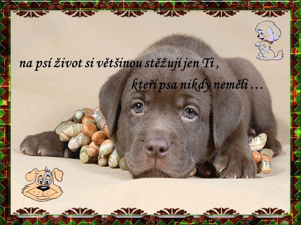 na psí život si většinou stěžují jen Ti, kteří psa nikdy neměli …
