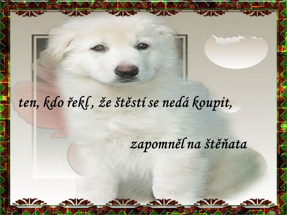 pořiďte si psa a dostanete trvalou a bezelstnou lásku