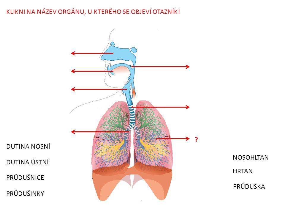 Zdroj použitého obrázku: File:Respiratory system complete numbered.svg.